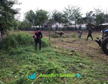 Defrisari terenuri si pasuni de orice tip de vegetatie
